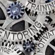 importance of mentoring - sistr blog