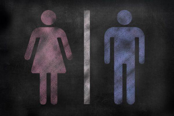 Gender Bias sistr blog