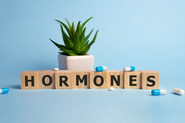 scrabble tiles spelling hormones with medicince capsules and a pot plant